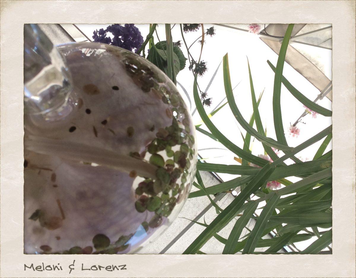 Meloni und Lorenz